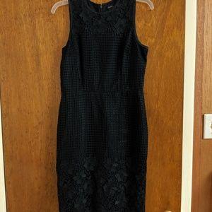 Ann Taylor Navy Floral Dress